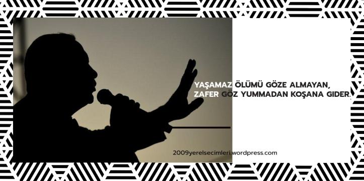 erdogan-zafer-turkusu (1)